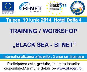 Banner-Conferinta-afaceri-Tulcea-300x250-px